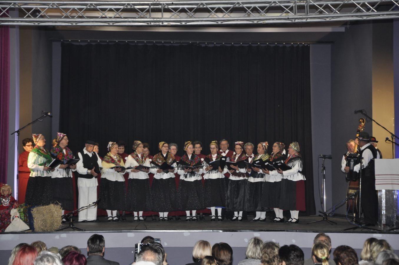 Festival manjina (1)