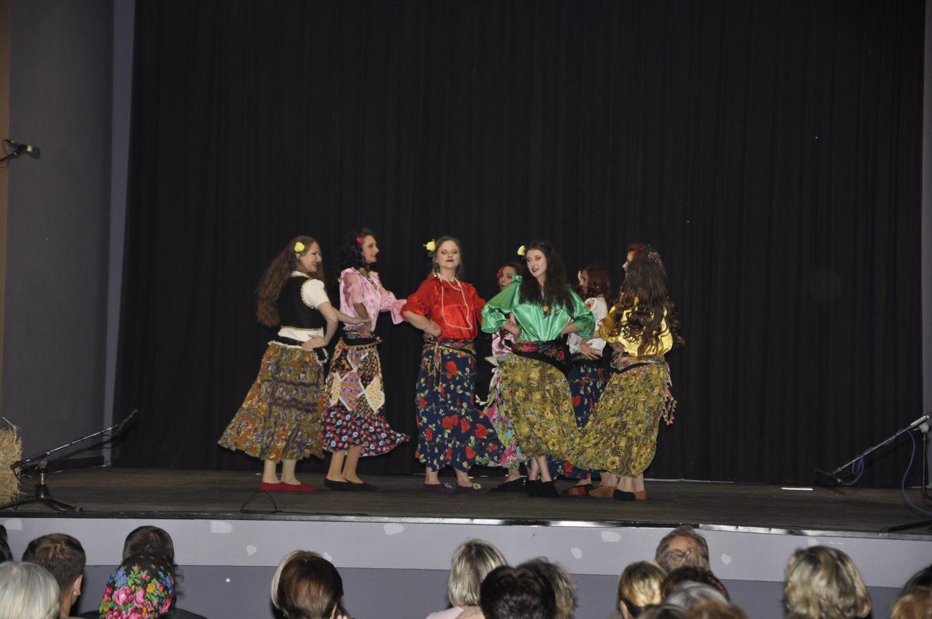 Festival manjina (13)