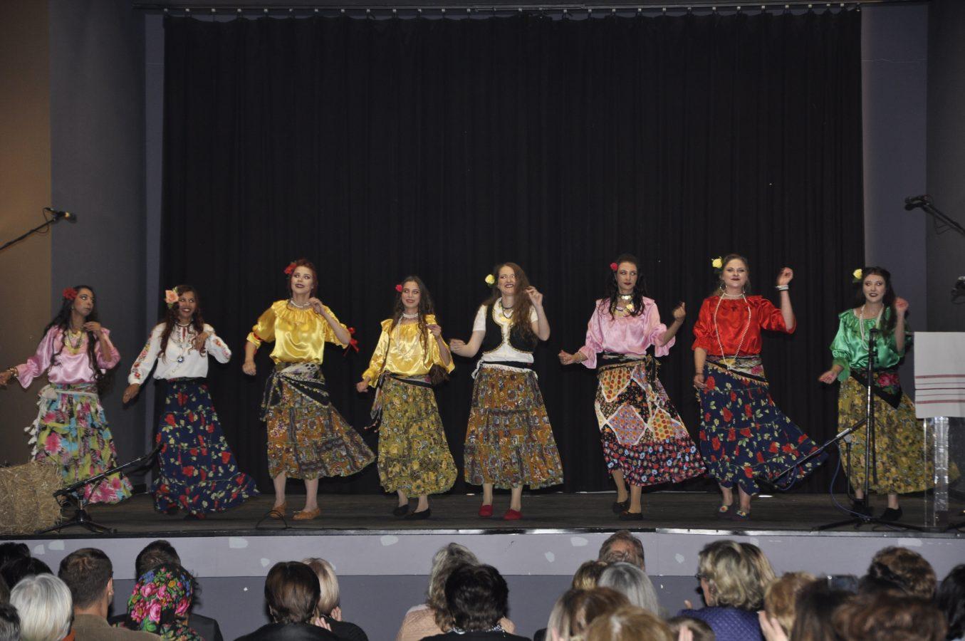 Festival manjina (14)