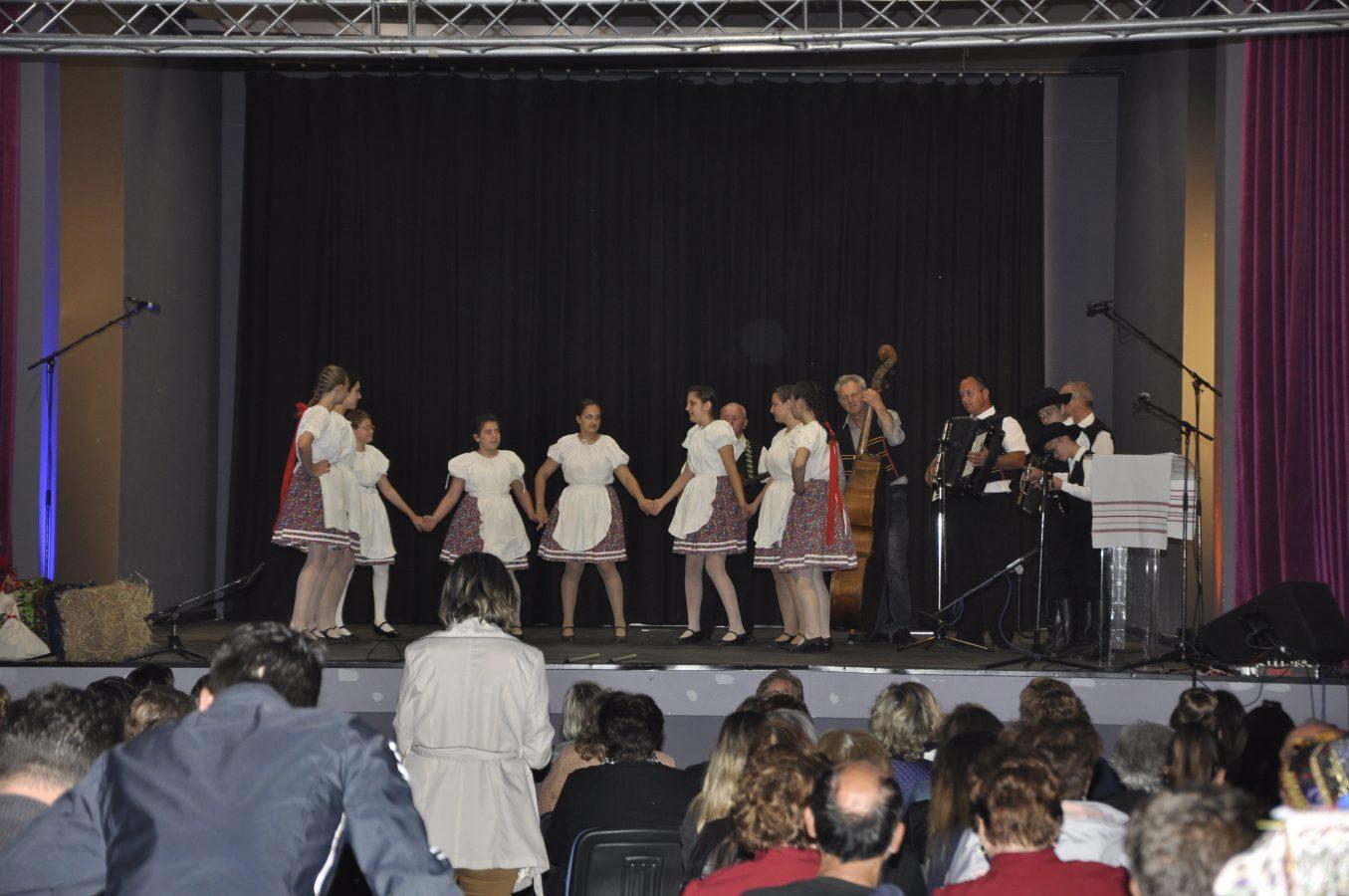 Festival manjina (2)
