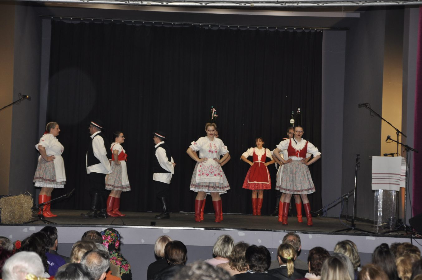 Festival manjina (7)